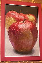 """Картина - натюрморт """"Яблоки"""" вышивка крестик ручной работы."""
