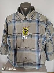 Мужская рубашка с коротким рукавом 7XL BYGEN Польша