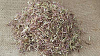 Татарник колючий (Onopordum acanthium), трава 100 грамм