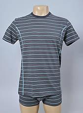 Мужские футболки (хлопок) полоска, фото 3