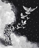 Картина по Номерам Космический полёт 40х50см BrushMe