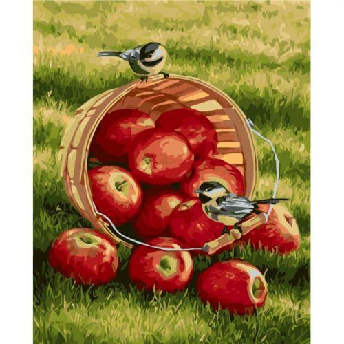 """Картина по номерам """"Хрустящие яблочки"""" ★★★★ КНО2469"""