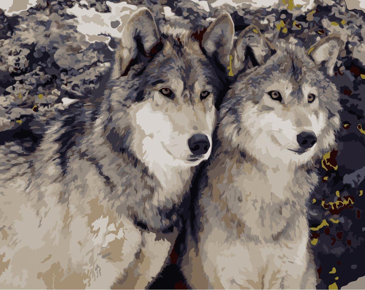 AS0170 Раскраска по номерам Преданность волка, В картонной коробке