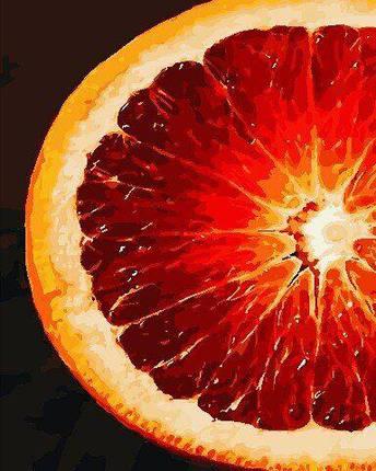 AS0772 Набор для рисования по номерам Грейпфрут, В картонной коробке, фото 2