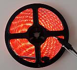 Разноцветная RGB  5050 LED лента 5м с пультом ДУ и Блоком Питания (ВидеоОбзор), фото 10