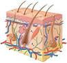 Книги по дерматологии и венерологии