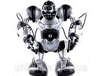 Умный радиоуправляемый робот Smart Robowisdom (36 см)