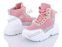 """Ботинки  женские """"Veagia-ADA"""" #P62-3. р-р 36-41. Цвет розовый. Оптом"""