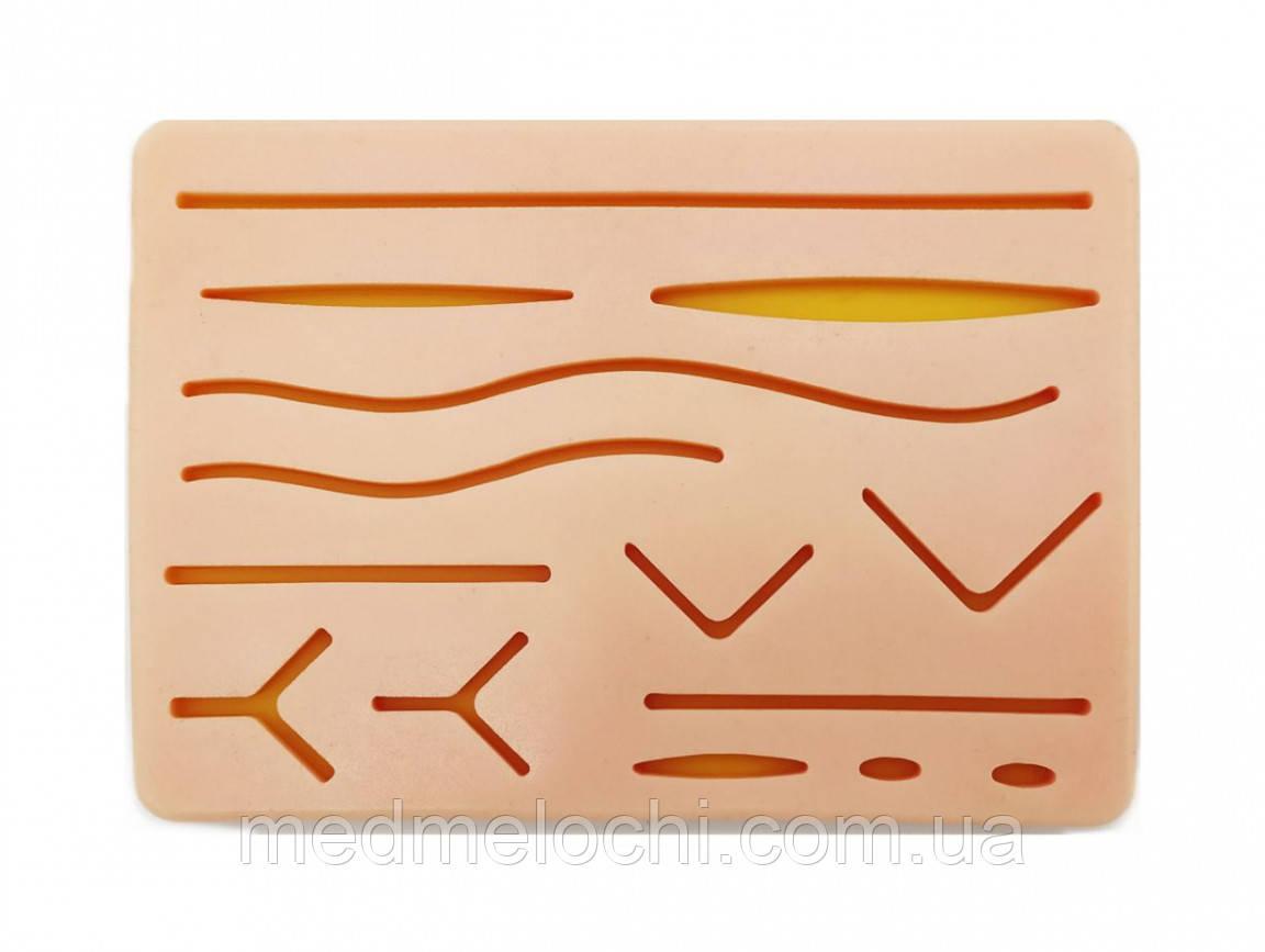 Макет шкіри для навчання