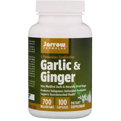Чеснок и Имбирь, Jarrow Formulas, 700 мг, 100 Капсул, фото 2