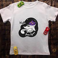 Мужская футболка с принтом - Котик в космосе