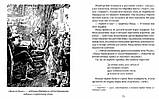 Книга Дина Бродская: Марийкино детство, фото 4