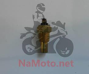 Датчик температуры двигателя (51 мм) CF4B40T