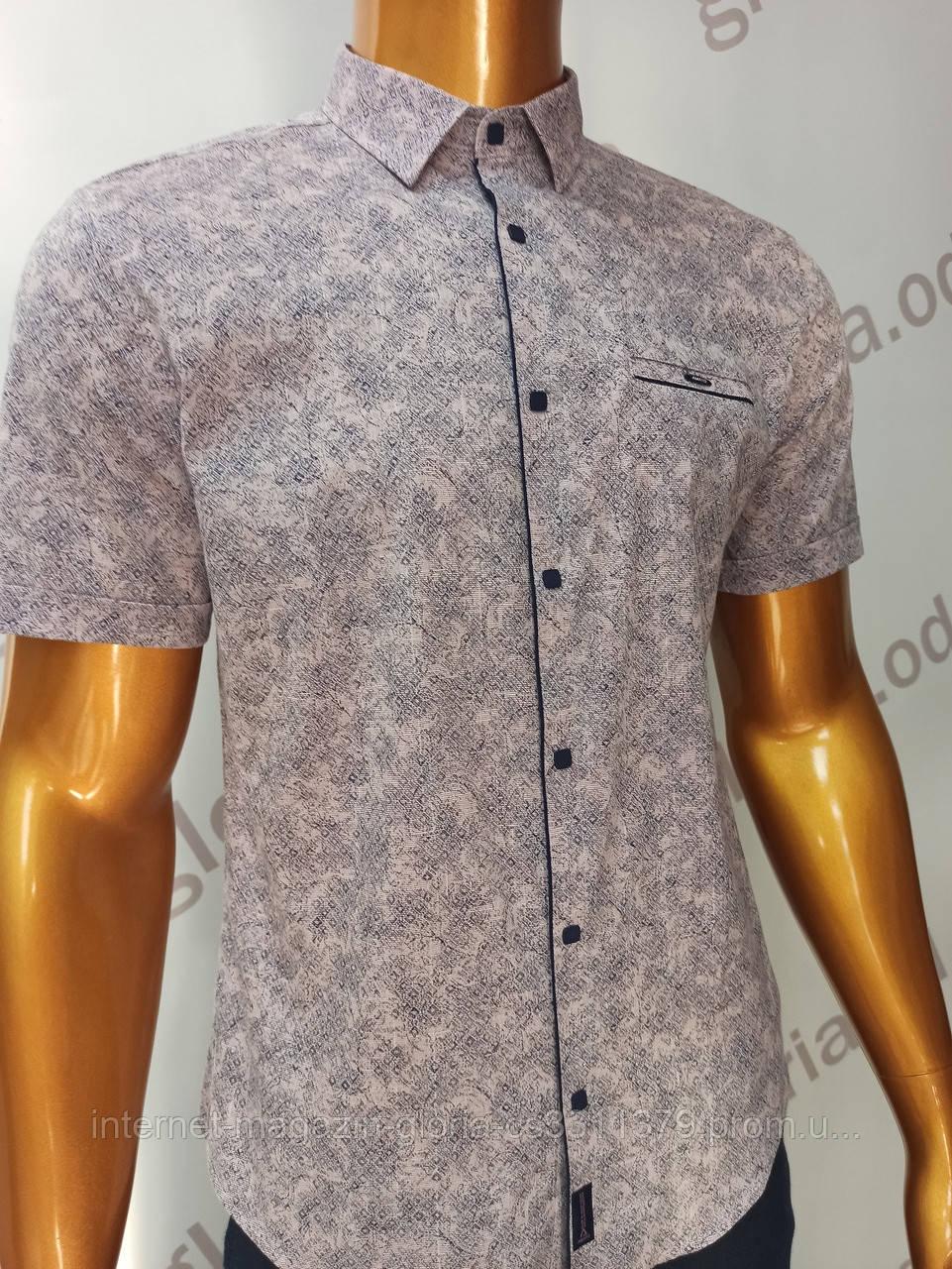 Мужская рубашка Amato. AG.19839(r). Размеры:M,L,XL, XXL.
