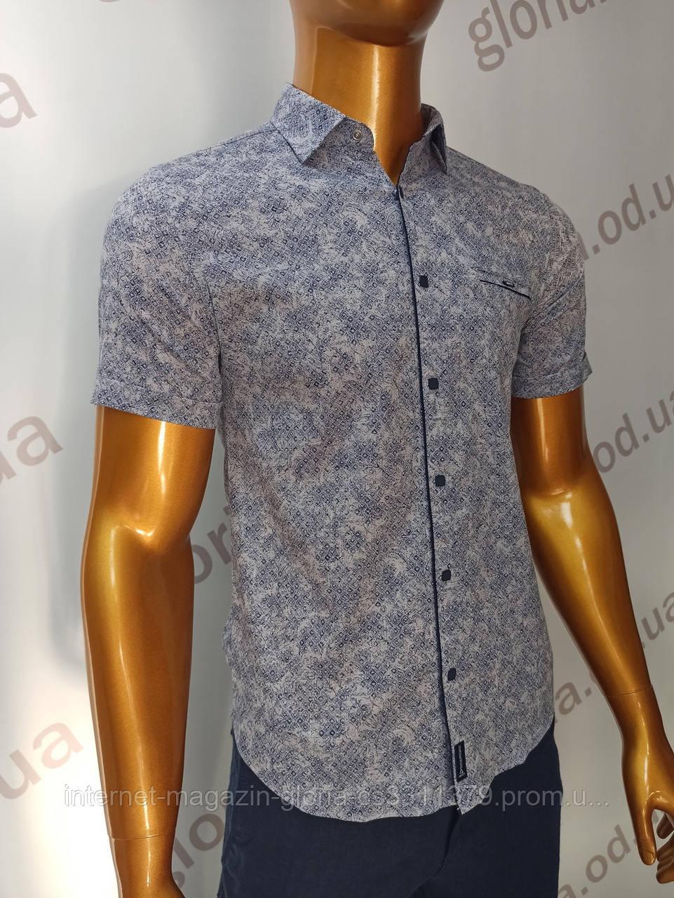 Мужская рубашка Amato. AG.19839(g). Размеры:M,L,XL, XXL.