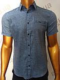 Мужская рубашка Amato. AG.KG19638(g). Размеры: M,L,XL,XXL., фото 3