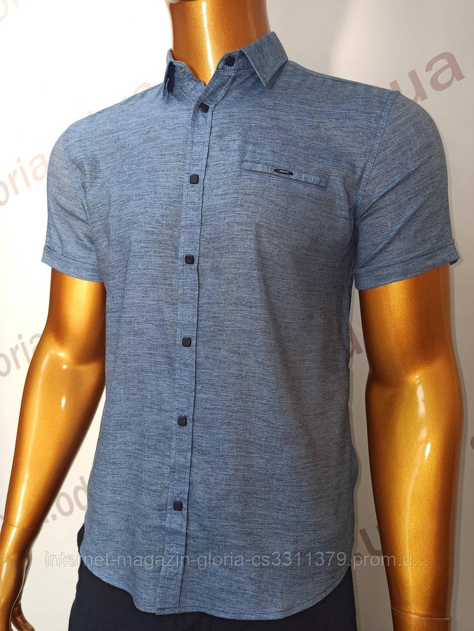 Мужская рубашка Amato. AG.KG19638(g). Размеры: M,L,XL,XXL.