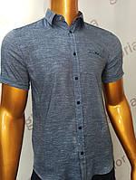 Мужская рубашка Amato. AG.19638(s). Размеры:M,L,XL, 2XL., фото 1