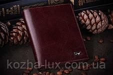 Шкіряна обкладинка на документи Braun Buffel, фото 2