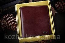 Брендовая обложка на паспорт Braun Buffel, фото 2