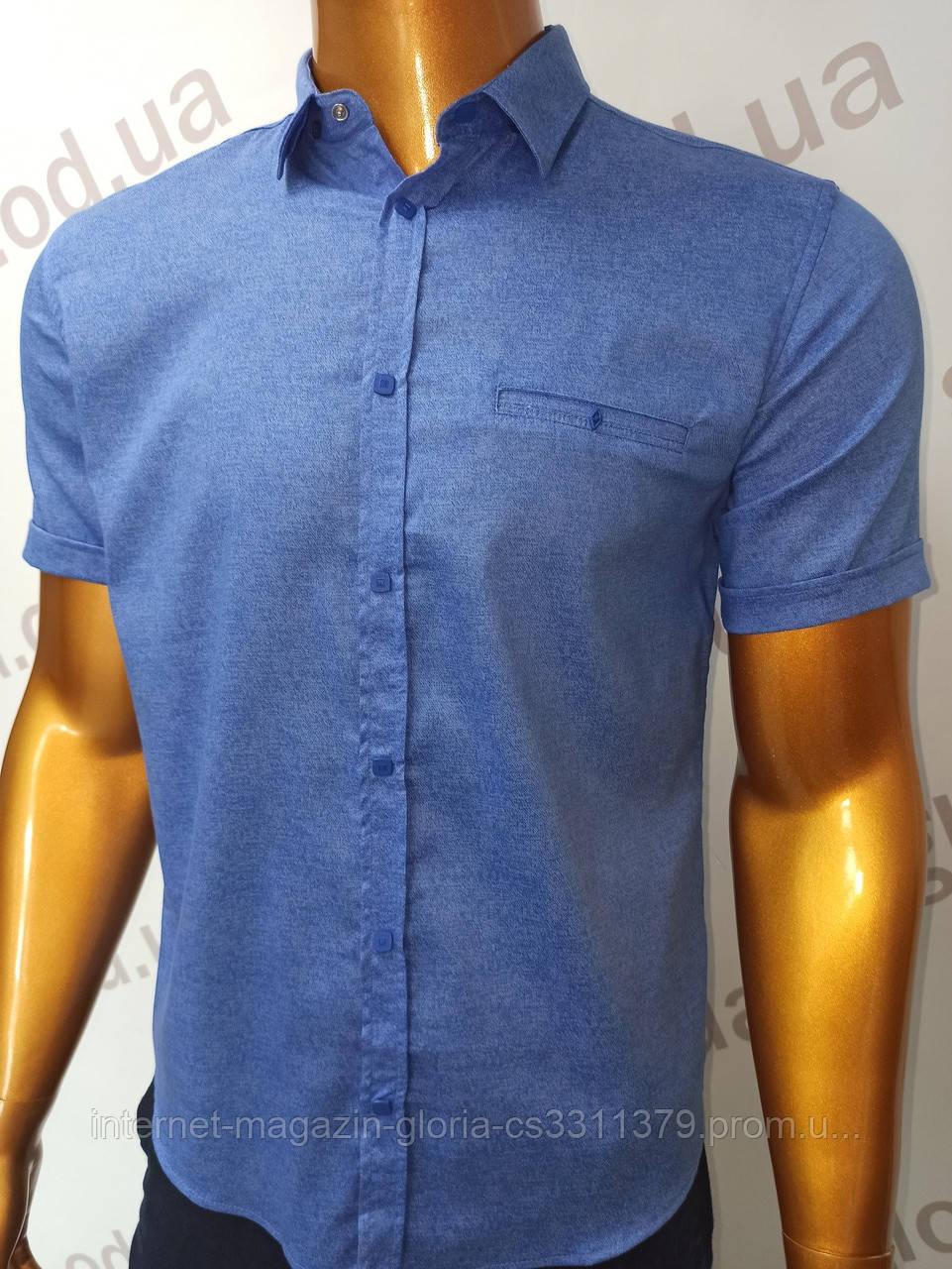 Мужская рубашка Amato. AG.19397-2(f). Размеры:M,L,XL(2), 2XL.