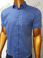 Мужская рубашка Amato. AG.19397-2(f). Размеры:M,L,XL(2), 2XL., фото 1