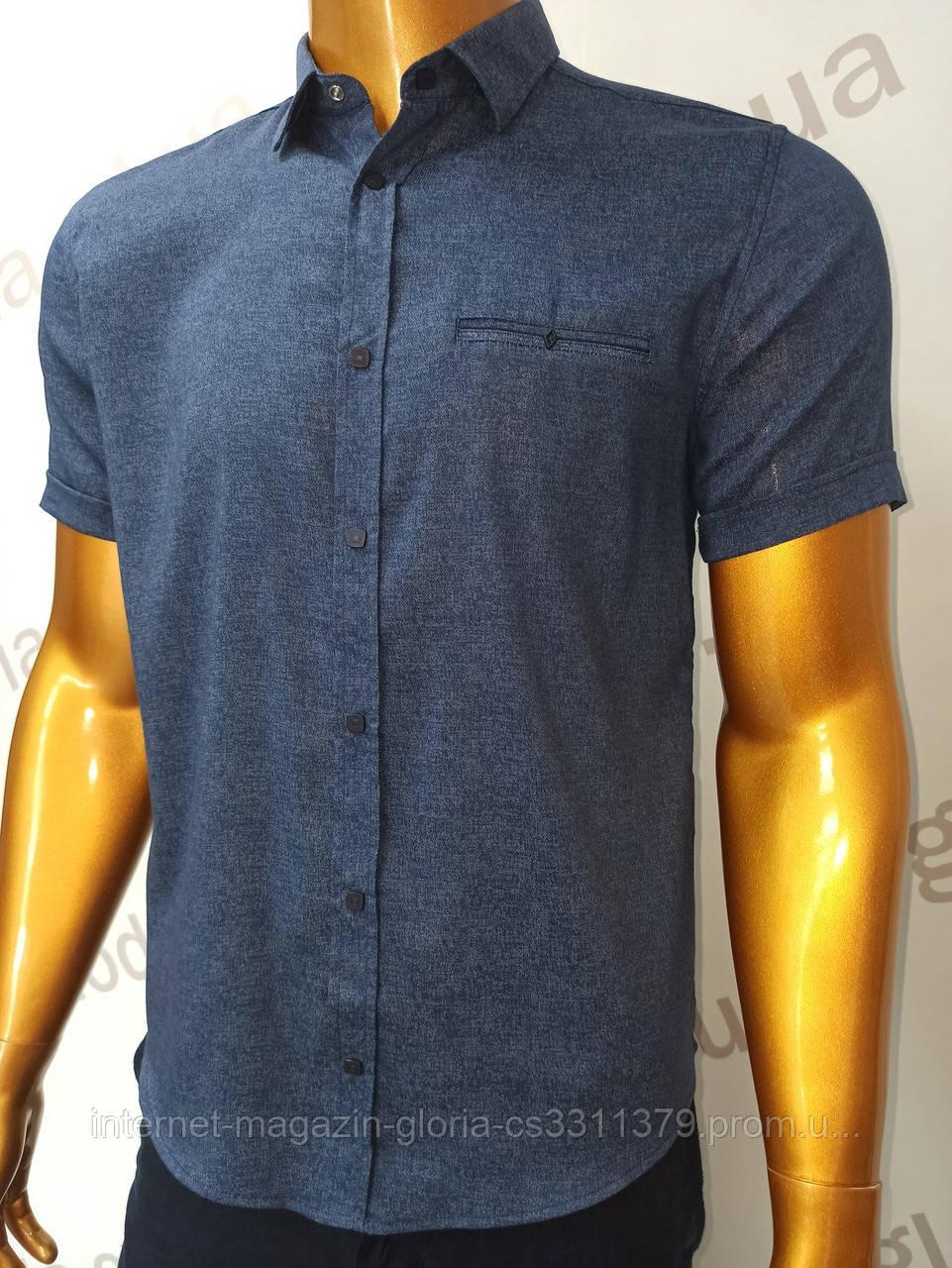 Мужская рубашка Amato. AG.19397-2(s). Размеры:M,L,XL(2), 2XL.