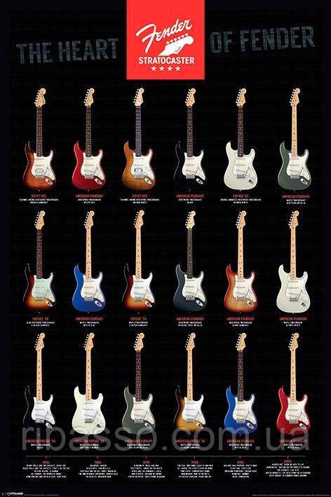 "Постер ""Fender - Stratocaster"""