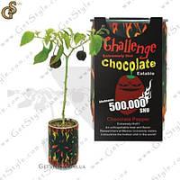 Chocolate Pepper - Шоколадный перчик