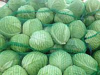 Сетка овощная 45*75 на 28 кг (22 гр), фото 1
