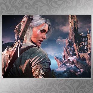 Плакат Witcher 07
