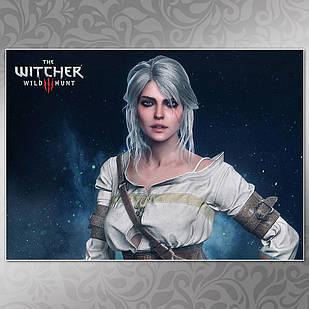 Плакат Witcher 27