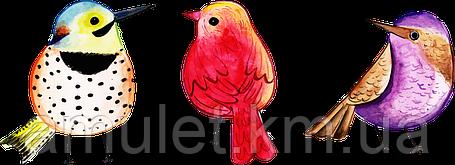 Футболка женская с принтом Птички 2, фото 2