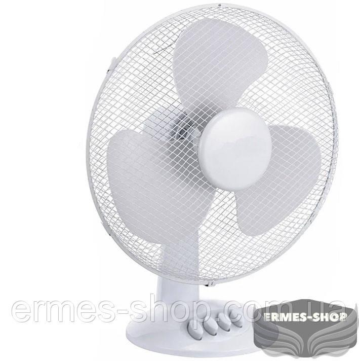 "Настольный вентилятор   Table Fan RB-0312   Rainberg  12"""