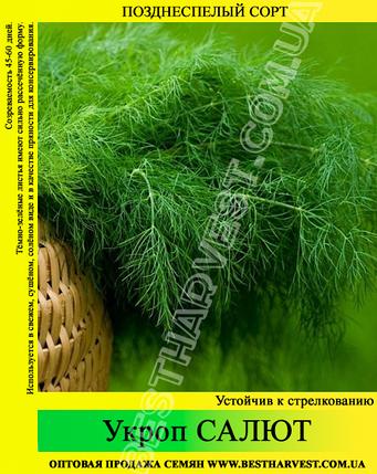 Семена укропа «Салют» 25 кг (мешок), фото 2