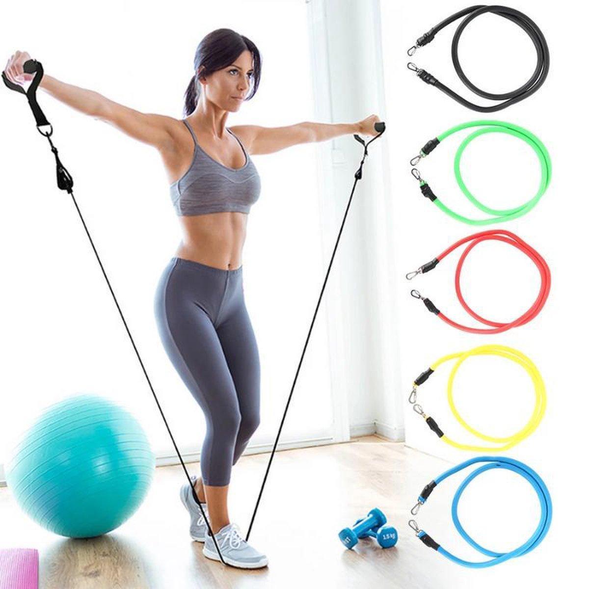 Набор трубчатых эспандеров для фитнеса многофункциональный 5 жгутов 1109