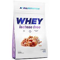 Сывороточный протеин AllNutrition Whey Lactose Free 700 г