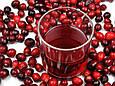 Клюквенный сок 100% без консервантов 500 мл, Altermedica, фото 4