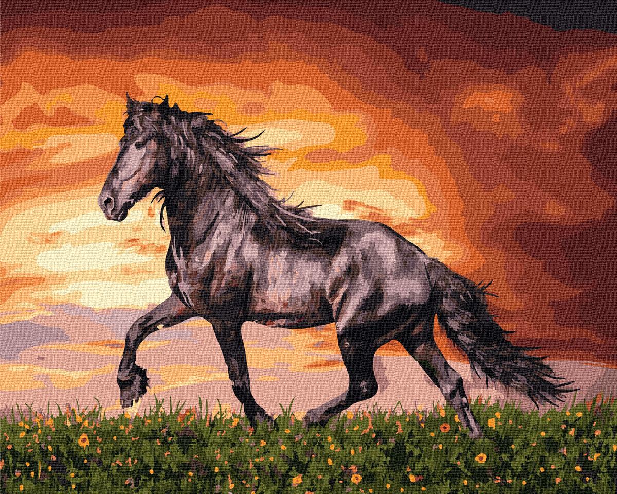 Рисование по номерам Черный конь GX34880 Rainbow Art 40 х 50 см (без коробки)