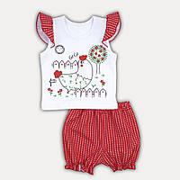 """Детский летний комплект для девочки футболка и шортики """"Chicken baby"""" - рост 74/80/86/92 красный"""