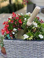 Лопатка садовая,посадочная,оцинкованная с деревянной ручкой