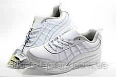 Білі жіночі кросівки Bona, Шкіра, фото 2