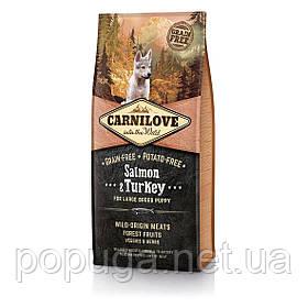Корм Carnilove SALMON & TURKEY LARGE BREED PUPPY для щенков крупных пород ЛОСОСЬ И ИНДЕЙКА, 12 кг