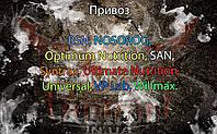 Поступление: BSN, NOSOROG, Optimum Nutrition, SAN, Syntrax, Ultimate Nutrition, Universal, VP Lab, Willmax.