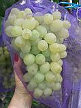 Сетка для винограда плотная фиолетовая для плодов 5 кг, фото 3