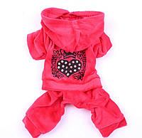 Осенни комбинезон Зимній осінній комбінезон осенняя одежда для собак тёплая одежда для собак