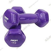PROFI - Гантели для фитнеса 2 шт. по 1 кг., фото 1