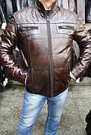 Куртка кожаная мужская 056-F.ARIS Коричневый