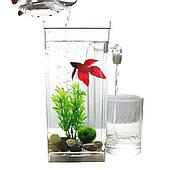 Аквариум самоочищающийся с LED подсветкой акриловый 2L 25см My Fun Fish