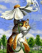 Картина за номерами Кіт з ромашкою